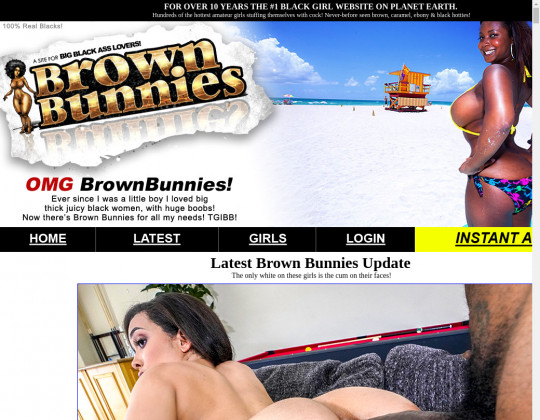 brownbunnies.com download
