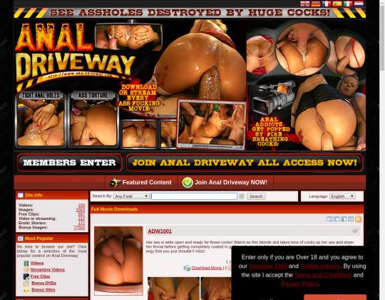 analdriveway.com porn