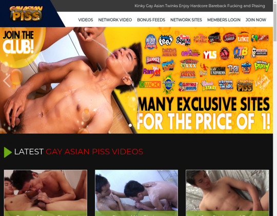 gayasianpiss.com sex