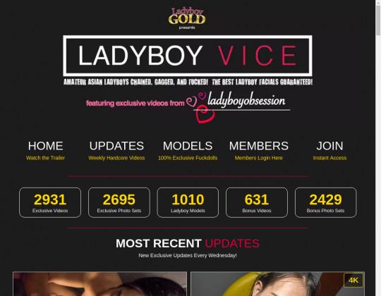 ladyboyvice.com porn