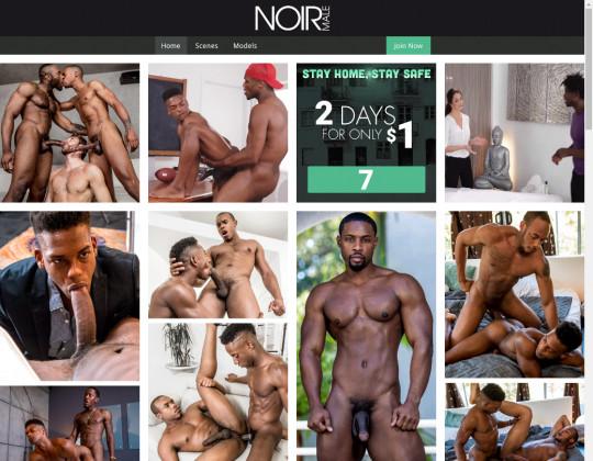 noirmale.com sex