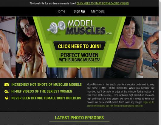 modelmuscles.com porn